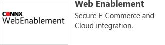 Web Enablement- Secure E-Commerce and Cloud Integration