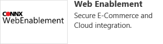 Web Enablement- Secure E-Commerce and Cloud Integration