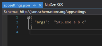 Screenshot of what appsettings.json file should look like